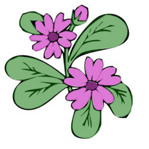 Free Clipart Picture of a Delicate Pink Flower