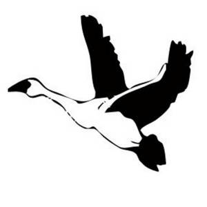 Free Clipart Picture of a Goose in Flight