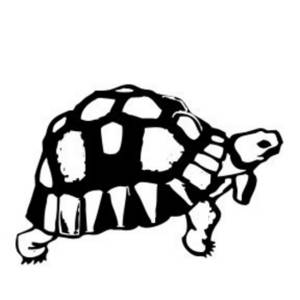 Free Clipart Picture of a Walking Turtle