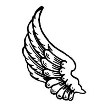 Free Clipart Picture of a Left Wing with Ruffled Feathers