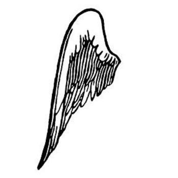 Free Clipart Picture of Left Side Wing
