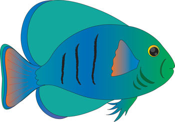 free clip art picture of a blue and green tropical fish rh clipartguide com  tropical fish clipart black and white