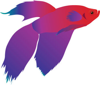 Free Clip Art Picture of a Red and Purple Beta Fish