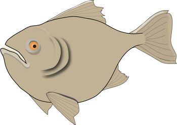 Free Clip Art Picture of a Piranha