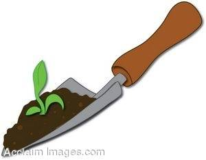 Trowel With Soil and a Seedling