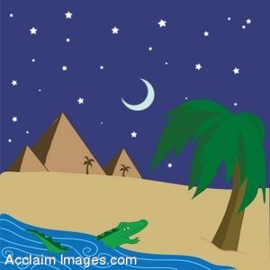 Alligator Coming On To an Egyptian Beach