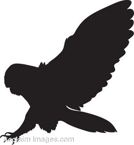 Swooping Owl Silhouette