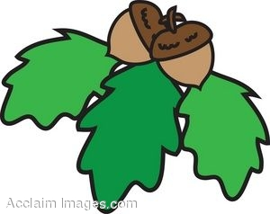 clipart of oak leaves with acorns rh clipartguide com oak leaf clipart free oak leaf acorn clipart