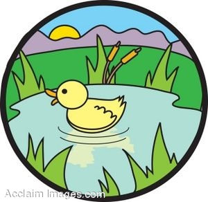 Duckie in a Pond