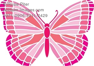 A Pink Lacy Winged Butterfly