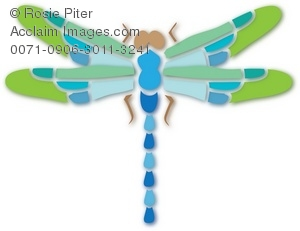 A Green And Blue Dragonfly