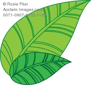 green tea leaves royalty free clip art picture rh clipartguide com clipart of fall leaves clip art of leaves black and white
