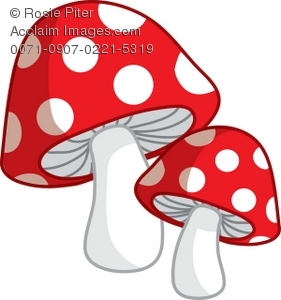 A Pair Of Red Spotted Toadstools
