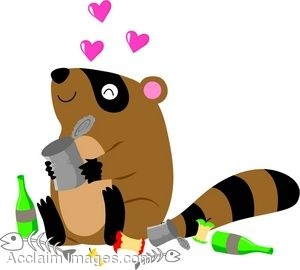 Raccoon In Love With Trash