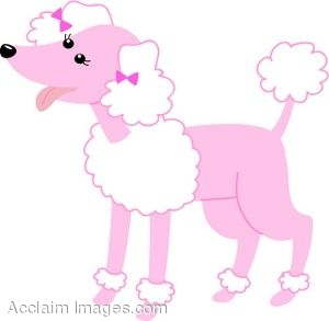 Pretty Poodle Color Sheet - Create A Printout Or Activity