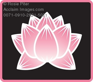Lotus Flower Bloom On A Background
