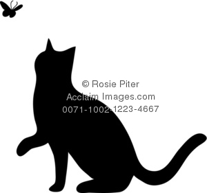 Silhouette of a Cat Playing With a Butterfly
