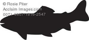 Silhouette of a freshwater fish, perhaps a trout or salmon
