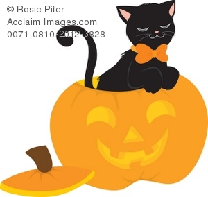 black cat and halloween jack-o-lanter pumpkin