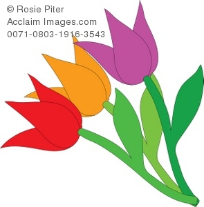 a purple orange and red tulip with green stems royalty free rh clipartguide com