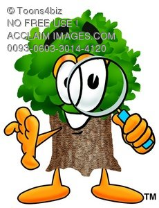 Cartoon Tree Character Looking Through a Magnifying Glass