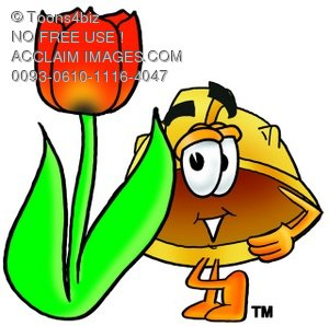 Hard Hat Cartoon Character With a Spring Tulip