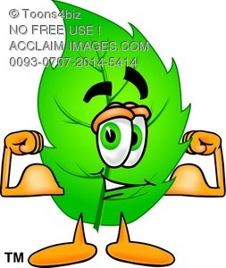 Cartoon Green Leaf Character Flexing Muscles