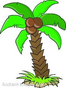 clip art of a cartoon coconut palm tree rh clipartguide com coconut tree clipart png coconut tree clipart black and white