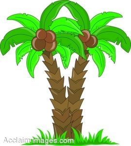 Two Cartoon Palm Trees