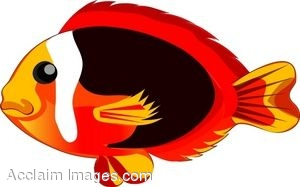 clip art of a red and yellow tropical fish rh clipartguide com tropical fish clipart free cute tropical fish clipart