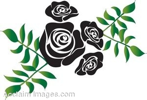 Black Rose Design