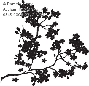 Silhouette of a Cherry Blossom Branch