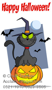 A Black Cat Sitting on a Jack-o-lantern With Bats on Halloween.