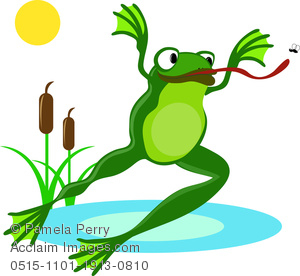 Frog Leaping Through the Air to Catch a Fly