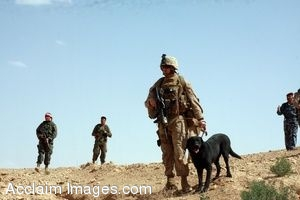 Clipart Photo of Marines With A Dog Trained To Detect Explosives