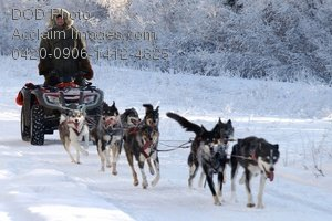 Clip Art Stock Photo of a Team of Dogs Harnessed to a Quad