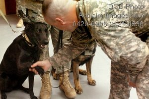 Clip Art Stock Photo of a Soldier Shaking With a Military Dog