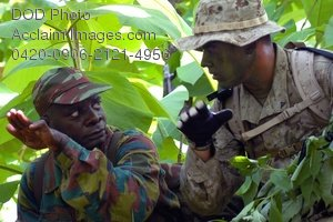 Clip Art Stock Photo of Soldiers in Camouflage in the Jungle