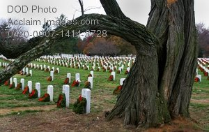 Free Public Domain Picture: Military Memorial Wreaths On Grave Headstones Photo
