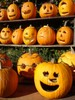 Lots of Halloween Pumpkins clipart