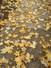 Autumn Leaves on a Sidewalk clipart