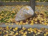 Bag of Leaves on a Curb clipart