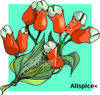 Orange Flowers clipart