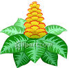 Flowering Plant With Flowers Shaped Like a Pineapple clipart