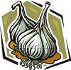 Bulbs of Garlic clipart
