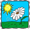 The Sun Shining On A Daisy Plant clipart