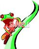 Red-Eyed Tree Frog clipart