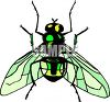 Greenback Fly Clip Art clipart