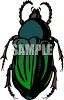 Dark Green Flower Beetle Clipart clipart