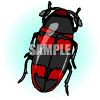 Red and Black Beetle Clip Art clipart